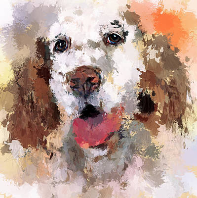 Dog Pet Art Print by Yury Malkov