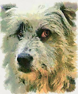 Funny Dog Digital Art - Dog Portrait 2 by Yury Malkov