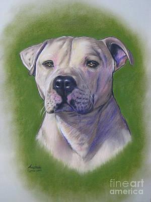 Pastel - Dog Portrait by Anastasis  Anastasi