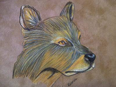 Dog Close-up Drawing - Dog by Riana Van Staden