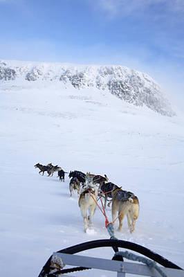Dogs Pulling Sled Towards Art Print by Axiom Photographic