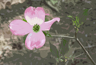 Photograph - Dogwood Blossom by Paulette B Wright