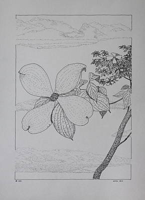 Art Print featuring the drawing Dogwood  by Daniel Reed