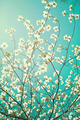 Cute Photograph - Dogwood Tree by Kim Fearheiley