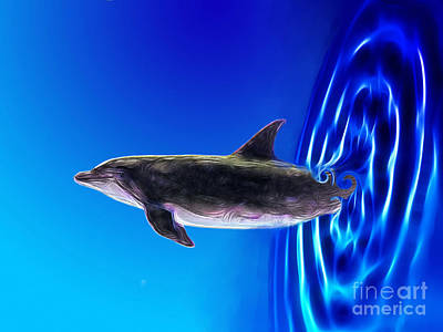 Dolphin Zoom Art Print by Methune Hively
