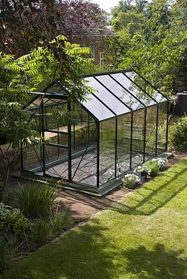 Domestic Greenhouse In Garden. Art Print by Mark Williamson