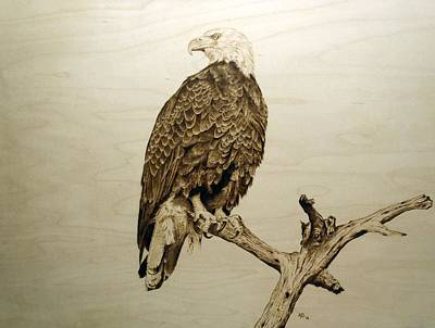 Pyrography - Don't Look Back  by Adam Owen