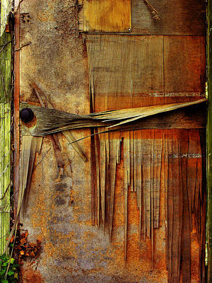 Door In Old Waterworks Building Art Print by Steven Ainsworth