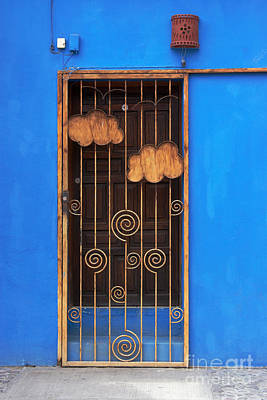 Grill Gate Photograph - Door With Metal Bars by Susan Isakson