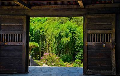 Art Print featuring the photograph Doors To Garden by Joseph Hollingsworth