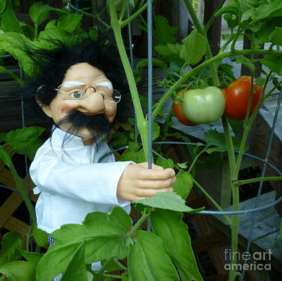 Art Print featuring the photograph Dorf Chef Doll With Tomatoes by Renee Trenholm