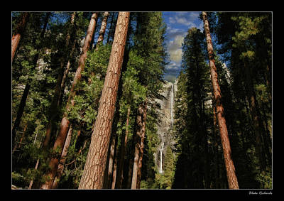 Photograph - Double Falls Though Trees by Blake Richards