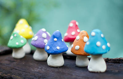 Y120817 Photograph - Doug Modeling Colorful Mushrooms by Kryssia Campos