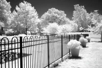 Dow Gardens Infrared Michigan Landscape Fine Art Art Print by Kathy Fornal