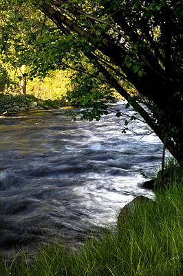 Big Thompson River Photograph - Down By The River by Ellen Heaverlo