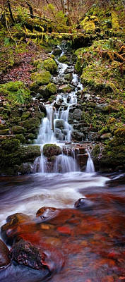 Photograph - Reelig Glen Waterfall by Joe Macrae