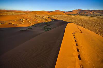 Down Dune Art Print