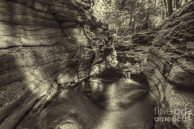 Dappled Light Photograph - Down In It August 2012 by Aaron Campbell