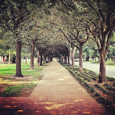 Pathway Photograph - Down The Path by Austin Stewart