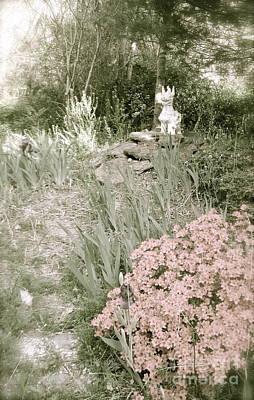 Photograph - Dragon Garden  by Nancy Patterson