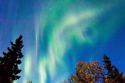 Northern Lights Photograph - Dragon Light by John Aldabe
