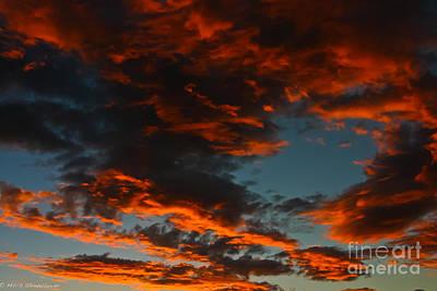 Pop Art - Dragon Sky by Mitch Shindelbower