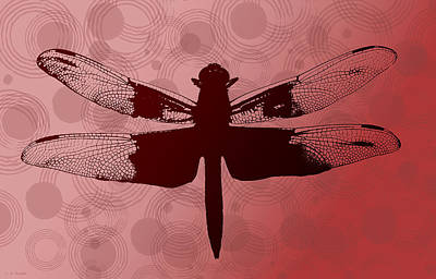Art Print featuring the photograph Dragonfly by Lauren Radke