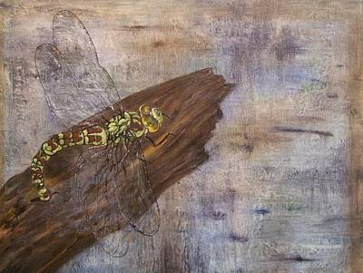 Dragonfly Laying Eggs On Wood-ppmpm3792-2860 Print by Pat Bullen-Whatling