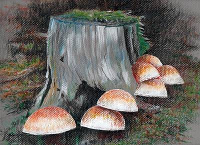 Photograph - Drawing Fungus The Orge Cap Gang On A Visit by William OBrien