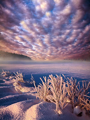 Dream Of Waking Art Print by Phil Koch