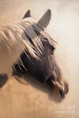 Horse Head Digital Art - Dreaming Across The Fence by Betty LaRue