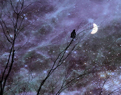 Dreams Of A Crow Print by Gothicrow Images