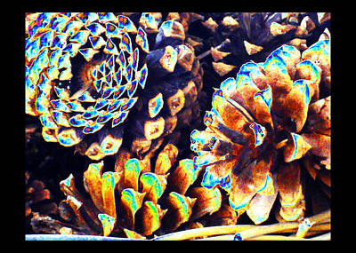 Art Print featuring the photograph Dreamtime Pinecones by Susanne Still