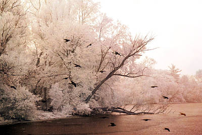 Dreamy Ethereal Infrared Lake With Ravens Birds Art Print by Kathy Fornal