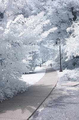 Dreamy Infrared Michigan Park Nature Landscape Print by Kathy Fornal