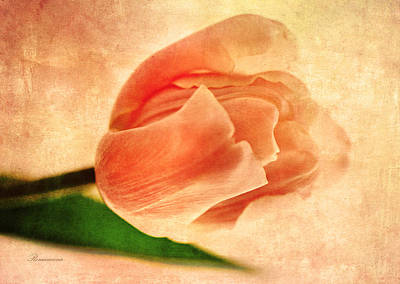 Daughter Gift Mixed Media - Dreamy Vintage Tulip by Georgiana Romanovna