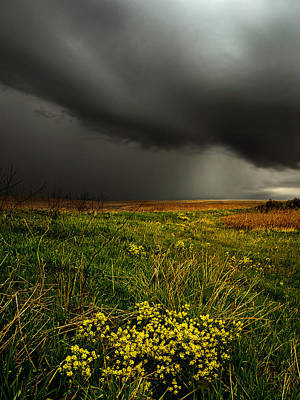Dreary Days Print by Phil Koch