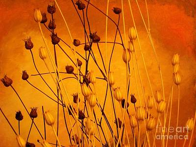 Yellow Background Digital Art - Dried Beautiful by Marsha Heiken