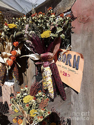Photograph - Dried Flowers And Indian Corn by David Bearden