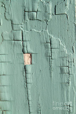 Chipping Paint Photograph - Dried Paint Texture by Photo Researchers, Inc.