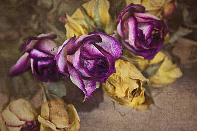 Photograph - Dried Roses by Cheryl Davis