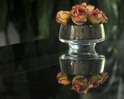 Photograph - Dried Roses by Douglas Pike