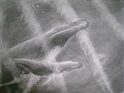 Humpback Whale Drawing - Drifting by Paul Barnych
