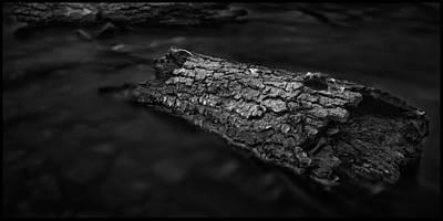 Photograph - Driftwood by Joe Macrae