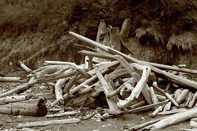 Photograph - Driftwood Pile San Juan by Lorraine Devon Wilke