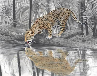 Drawing - Drinking Jaguar by Christian Conner