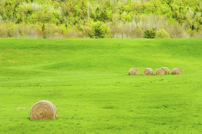 Maine Meadow Photograph - Dry Hay Bales In Spring Farm Field Maine Photo by Keith Webber Jr