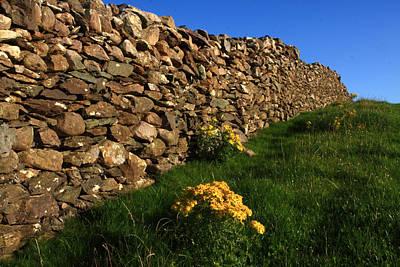 Dry Stone Fence Original by Aidan Moran