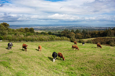 Photograph - Dublin City Seen From Wicklow Mountains by Semmick Photo