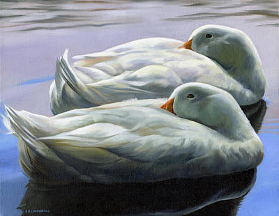 Painting - Duck Nap by Alecia Underhill